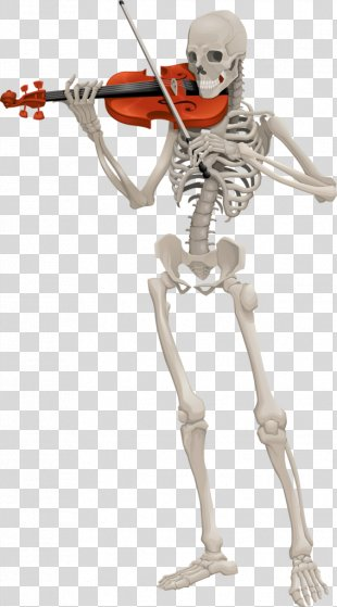 Skeleton Animation - Skeleton PNG
