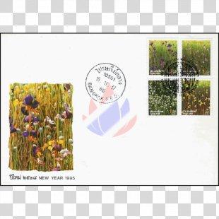 Floral Design Ecosystem Meadow Picture Frames - Design PNG