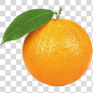 Orange Juice Citrus × Sinensis Stock Photography Mandarin Orange - Orange PNG