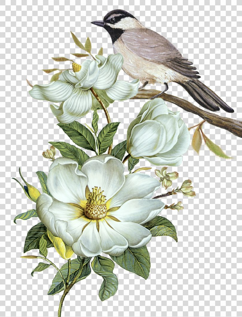 Pixel Computer File, Free Hand-painted Flowers And Birds Decorative Patterns PNG