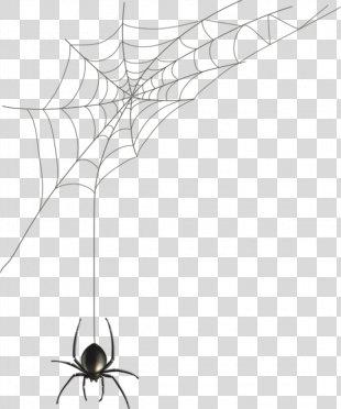 Spider Web Black House Spider Illustration - Hand-painted Spider Web PNG