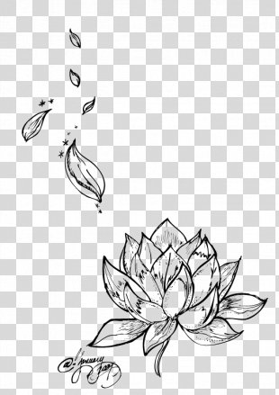 Egyptian Lotus Nelumbo Nucifera Tattoo Flower Drawing - Lotus PNG