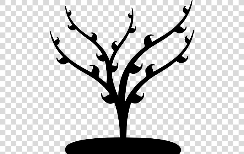 Tree Branch, Tree PNG