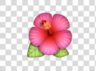 Emoji Pop! Hibiscus IPhone Emojipedia - Emoji PNG
