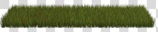 Grass Herbaceous Plant Lawn Clip Art - Grass PNG