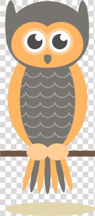 Owl Drawing Cartoon Illustration - Owl Vector PNG