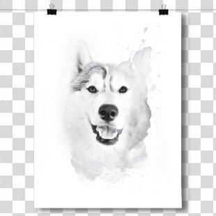 Siberian Husky Canadian Eskimo Dog Sakhalin Husky Puppy Dog Breed - Husky Drawing PNG