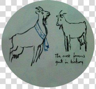 Reindeer Antler Drawing /m/02csf Font - Reindeer PNG