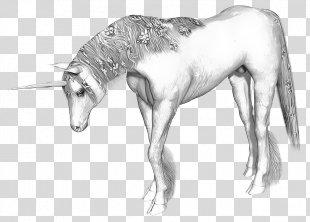 Unicorn Horn Horse Legendary Creature Unicorn Horn - Unicorn PNG