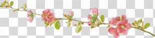 Spring Gerber Format Clip Art - Spring PNG