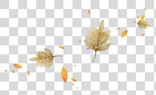 Autumn Leaves Light Leaf - Autumn Leaves PNG