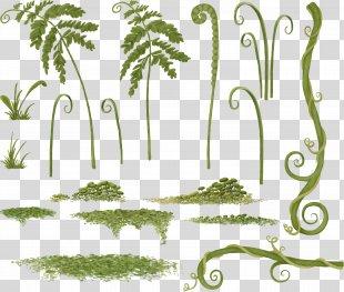 Grass Floral Design Plant Stem Clip Art - Grass PNG