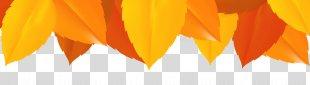 Graphics Font Computer Wallpaper - Fall Leaves Border Clip Art PNG