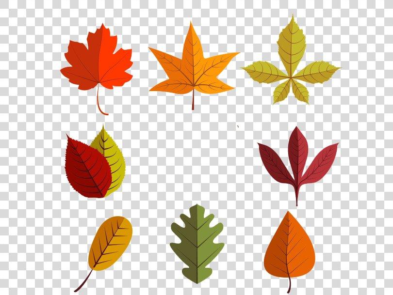 Leaf Euclidean Vector Autumn, Autumn Leaves Material PNG
