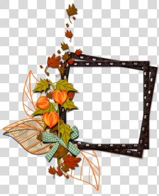 Floral Design Cut Flowers Picture Frames Clip Art - Flower PNG