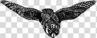 Owl Drawing Bird Of Prey Beak - Owl Drawing Swooping PNG