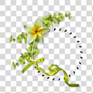 Floral Design Flower - Vector Floral Border Creative Floral Border Vector Material PNG