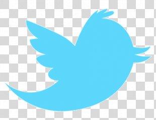 Logo Social Media - Social Media PNG