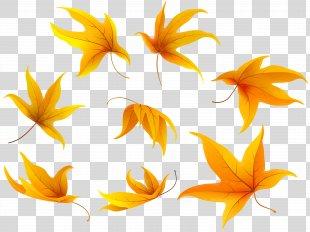 Petal Leaf Flowering Plant Clip Art - Fall Leaves Clip Art Image PNG