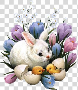 Easter Bunny Happy Easter! Easter Egg Christmas - Easter PNG