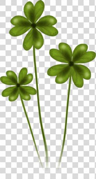 Saint Patrick's Day 17 March Shamrock Clip Art - Saint Patrick's Day PNG