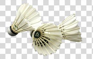 Badminton Net Icon - Badminton PNG