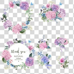 Flower Garden Hydrangea Blossom - Vector Colored Bouquet Wreath PNG
