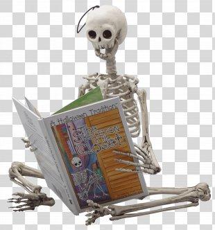 Skeleton In The Closet Skull YouTube Halloween Film Series - Skeleton PNG