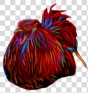 Rooster Chicken Galliformes - Rooster PNG