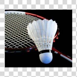 Badminton World Federation How To Play Badminton BWF World Junior Championships Pakistan Badminton Federation - Badminton PNG