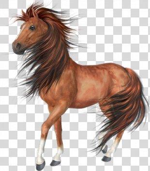 Horse Desktop Wallpaper Clip Art - Horse PNG