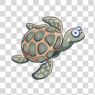 Sea Turtle Tortoise Turtle Green Sea Turtle Reptile - Pond Turtle Loggerhead Sea Turtle PNG