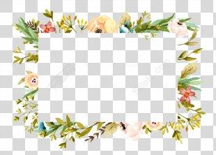 Floral Design Plant - BORDER SUMMER PNG