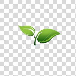 Spring Framework Spring & Sprout Support Services, LLC Enterprise JavaBeans Application Server - Spring Framework Logo PNG