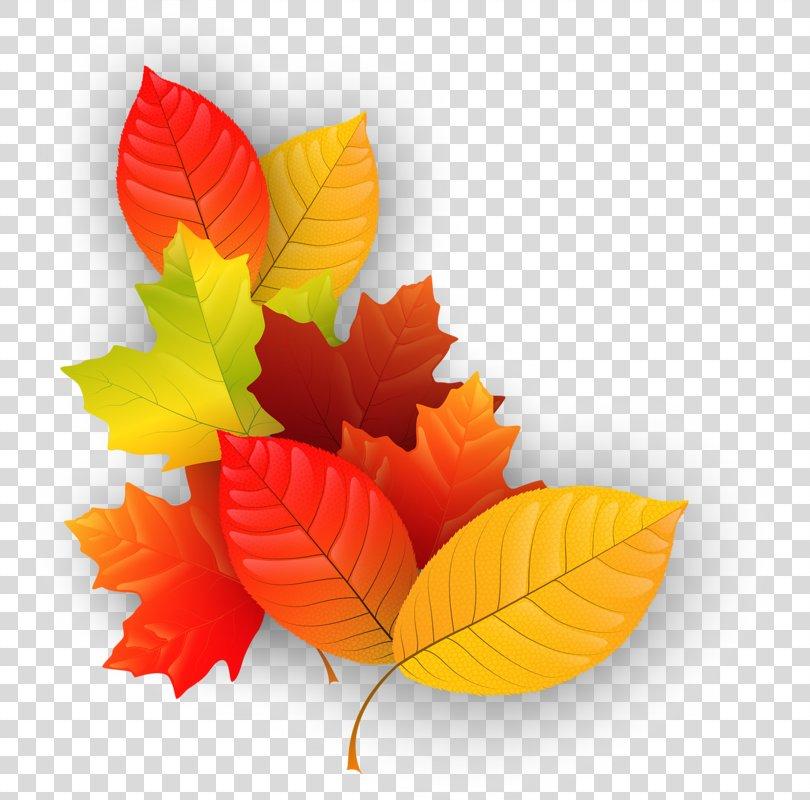 Maple Leaf Autumn Clip Art, Leaf PNG