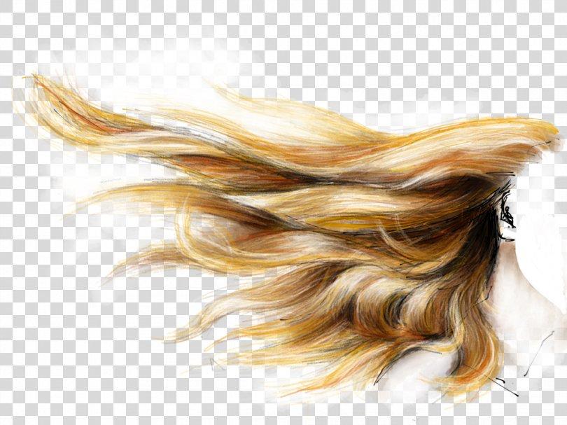 Hair Coloring Brown Hair Human Hair Color Blond, Black Hair PNG