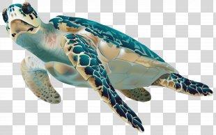 Sea Turtle Clip Art - Sea Turtle Transparent Clip Art Image PNG