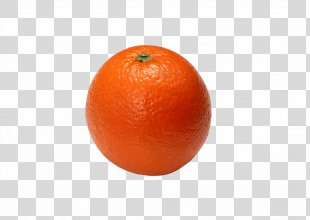 Orange Juice Clementine Blood Orange - Orange PNG