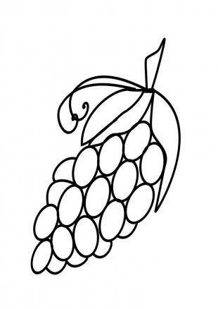 Drawing Grape Fruit Clip Art - Art Grapes PNG