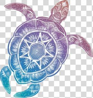 Sea Turtle RSS Web Feed Blog Tortoise - Sea Turtle PNG