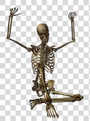 Skeleton Clip Art - Skeleton PNG