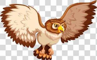 Owl Drawing Euclidean Vector Illustration - Vector Cartoon Owl PNG