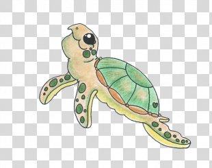 Sea Turtle Tortoise Animal Endangered Species - Sea Turtle PNG