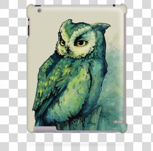 Owl Watercolor Painting Bird - Owl PNG