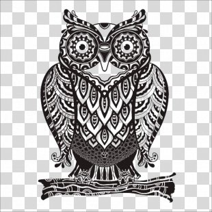 Owl Drawing Royalty-free Euclidean Vector - Owl PNG