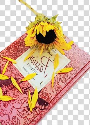 Books Cartoon - Sunflower Plant PNG