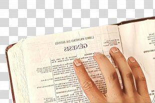 Books Cartoon - Document Thumb PNG