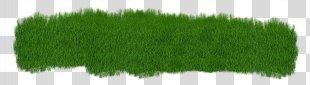 Grass Lawn Grasgroen Clip Art - Grass PNG