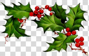 Borders Clip Art Borders And Frames Common Holly Openclipart PNG