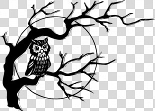 Black-and-white Owl Drawing Clip Art - Owl Illustration PNG